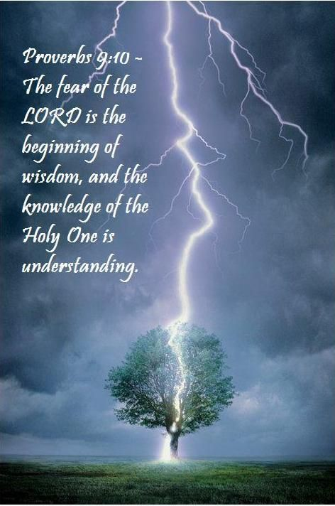 >   King James Version (KJV)   The fear of the LORD is the beginning of wisdom: and the knowledge of the holy is understanding