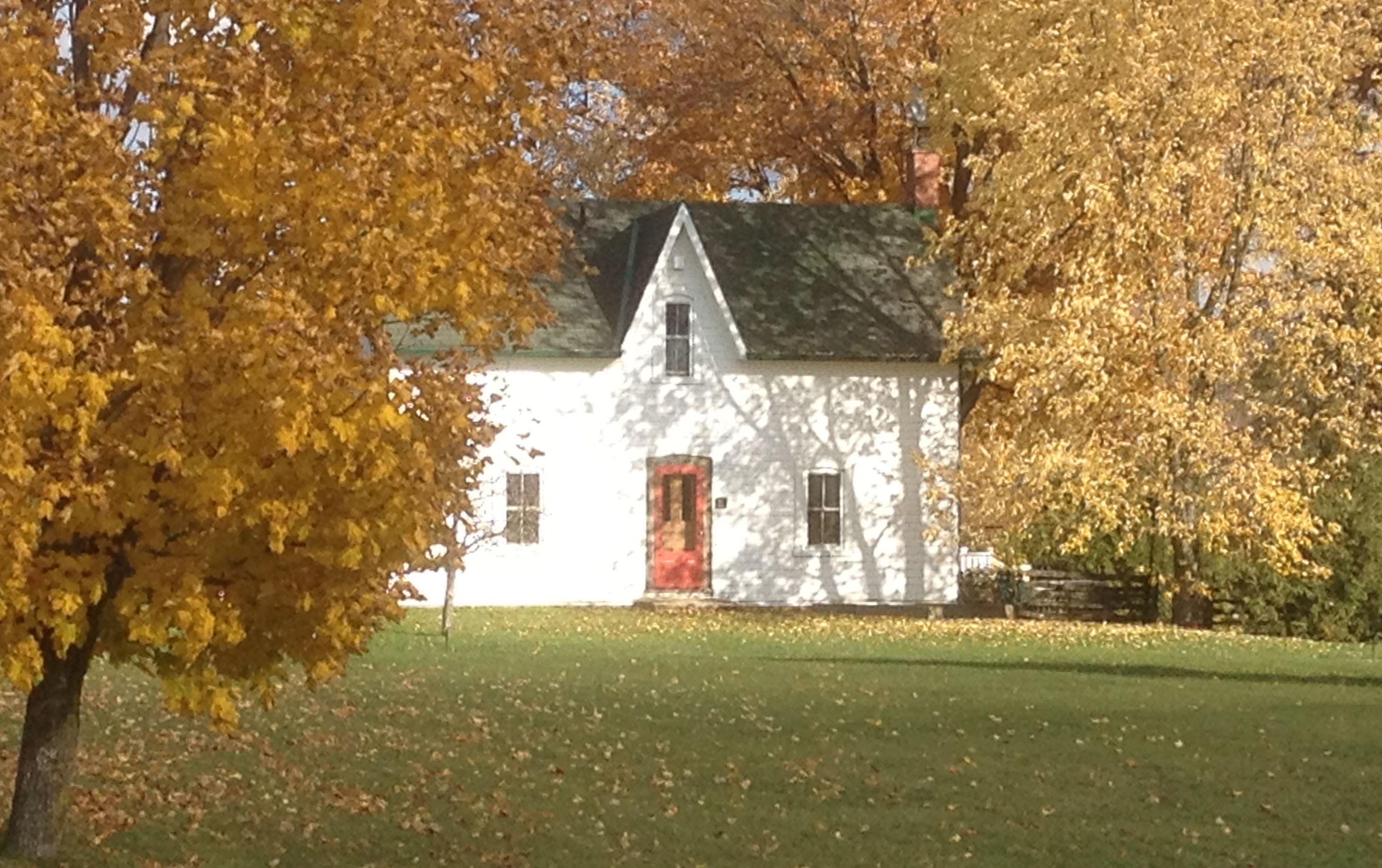 Fall colours at Highland Creek Farm, a selfcatering
