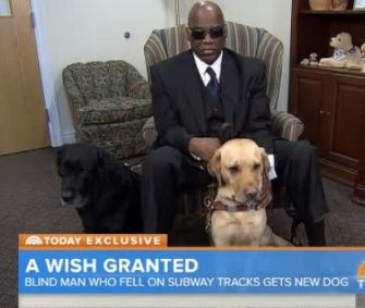 A Blind Man Who Survived A Fall Onto The Subway Tracks In New York Got A New Guide Dog So His Retiring One Can Relax Guide Dog Dogs River Dolphin