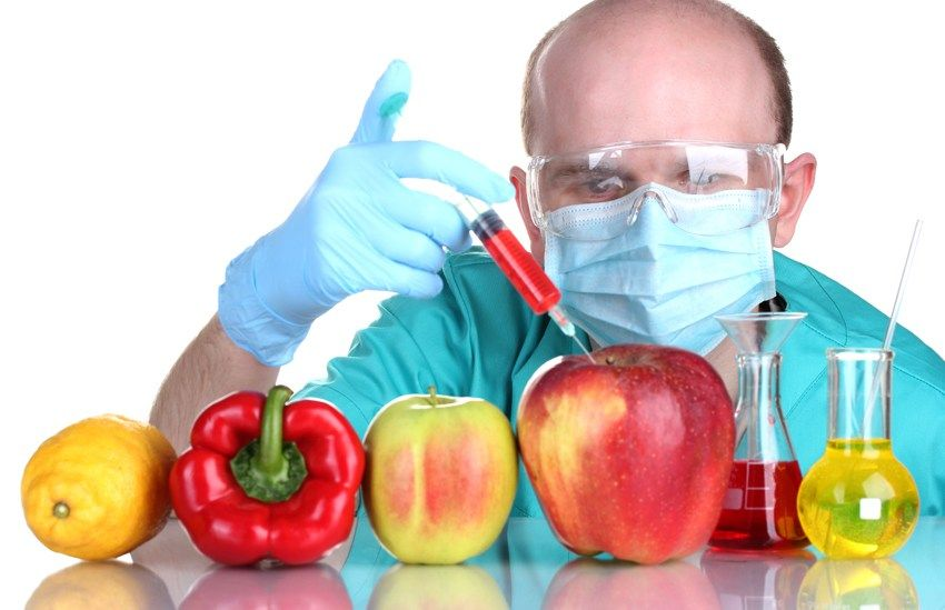 Ethical Concerns Regarding Gmos In Pakistan Gmo Facts Gmo Foods