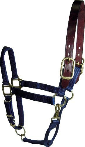 Hamilton 1 Adjustable Leather Head Poll Halter with Brass Snap, Large Size (1100-1600 Pounds), Navy by Hamilton. $36.66. High break resistant hardware. Rolled throat for comfort. Triple Thick Premium Nylon for unparalleled quality. Adjustable chin strap allows halter to be used on multiple horses. Quilted stitching for durable construction. Single Thick Premium Leather on headpole to ensure safety breakaway feature. The Hamilton Halter is a picture of strength and beauty...