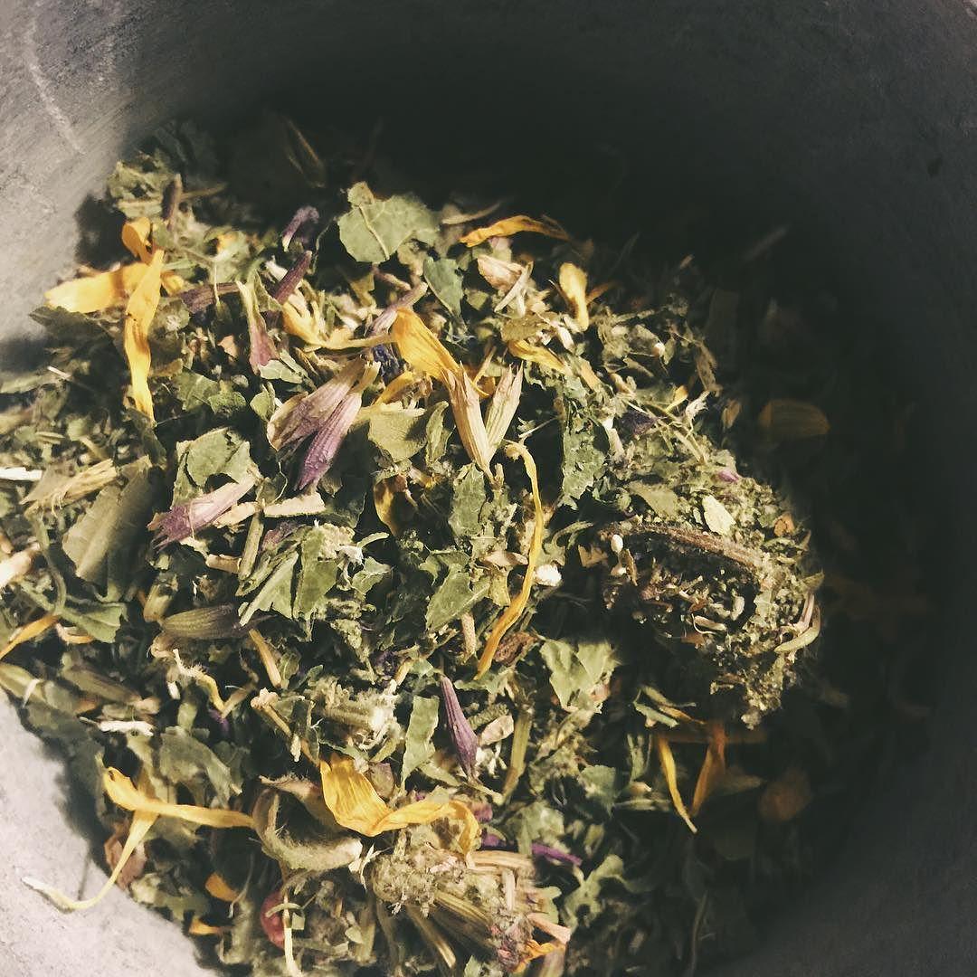 Sore throat remedy: blackberry leaf sage hyssop calendula marshmallow root bee balm thyme licorice red root leaf #tea #sorethroatremedy #naturalremedy #plantmedicine #plantspiritmedicine