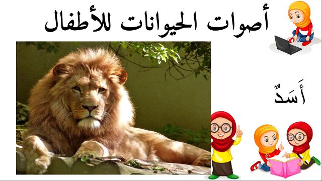 أسد أسماء الحيوانات للأطفال وأصواتها Lion Animals