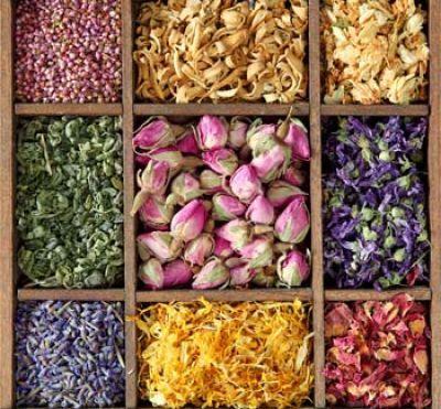 Drink Tea for Beauty@ BijaBody- Love their daily tea :)
