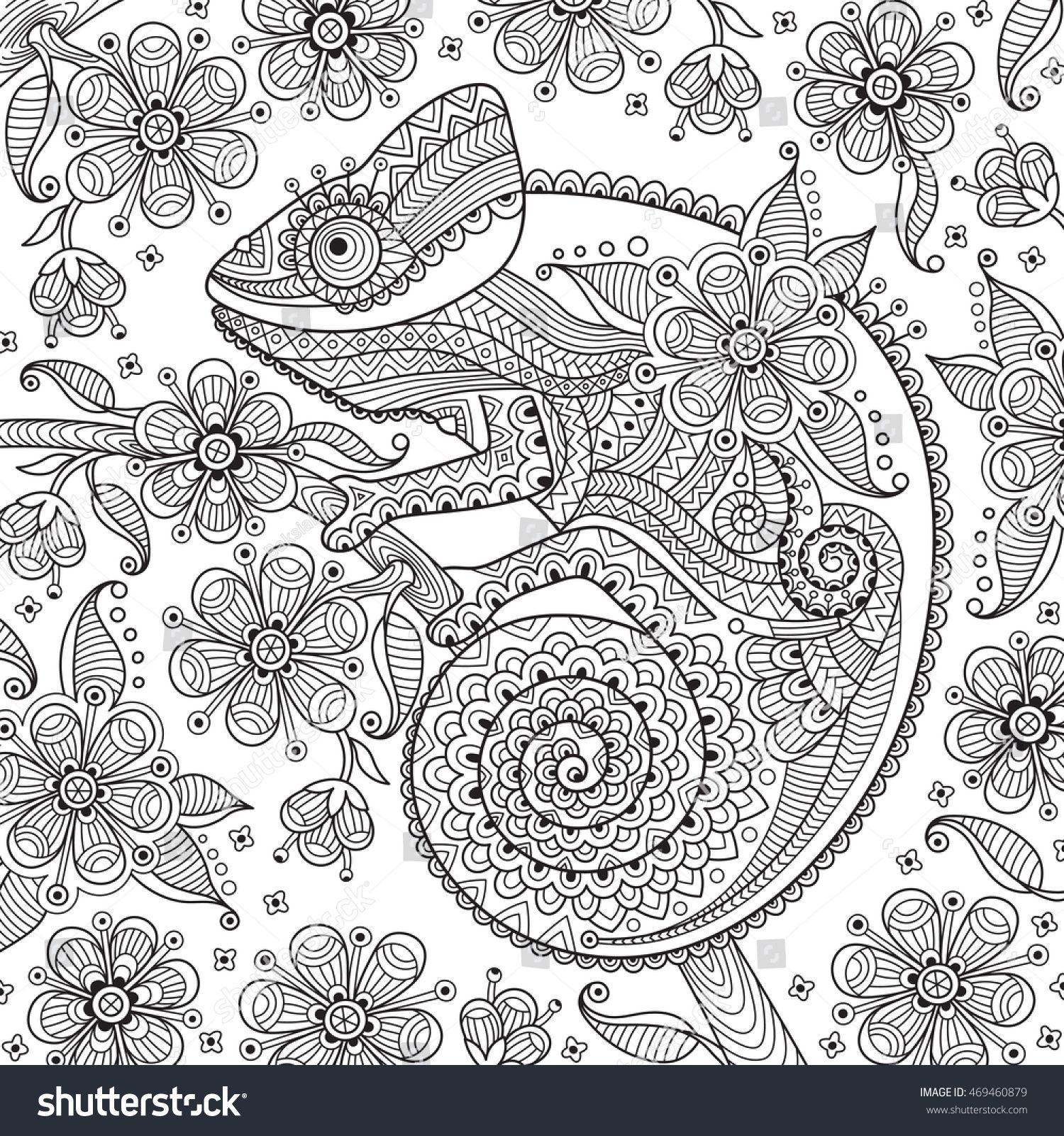 Pin Auf Chameleons