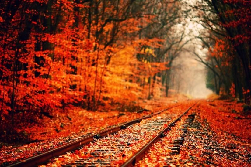 Autumn Tumblr Wallpaper Background Ypz 1920x1080 Px 414 47 Kb Nature 1920x1080 Cute Desktop Wal Fall Wallpaper Tumblr Fall Desktop Backgrounds Fall Wallpaper