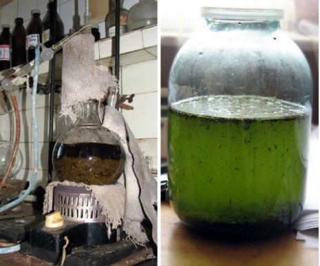 Homemade Absinthe? No thanks, but I like that now I know how.
