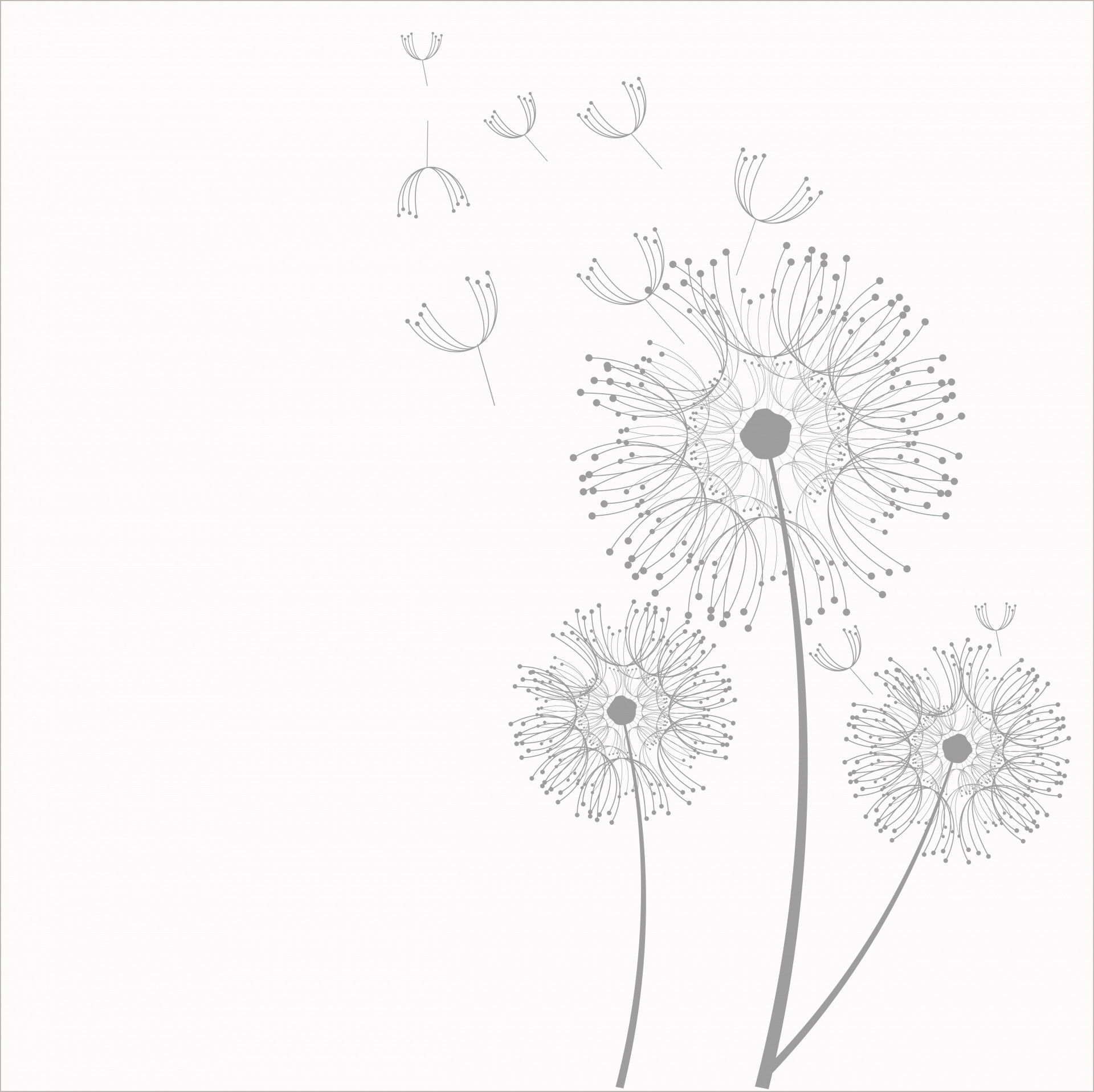 Dandelion Flowers Clipart Free Stock Photo Dandelion Drawing Collage Art Projects Free Clip Art