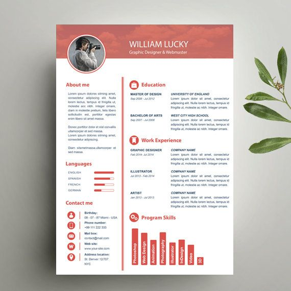 clean resume  professional resume design  cv and resume template