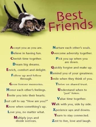 here ya go, bestfriends! I love you guys thanks for always ...