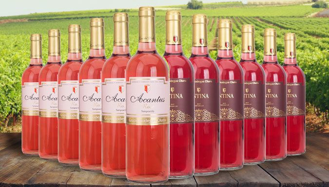 Buy 12-Bottle Antina & Acantus Rose Wine Collection UK deal for just ...
