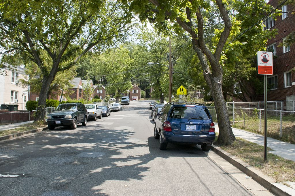 Tree Lined Streets | The Oaks in Southeast Washington DC | WC Smith #Apartments | DC #Rentals