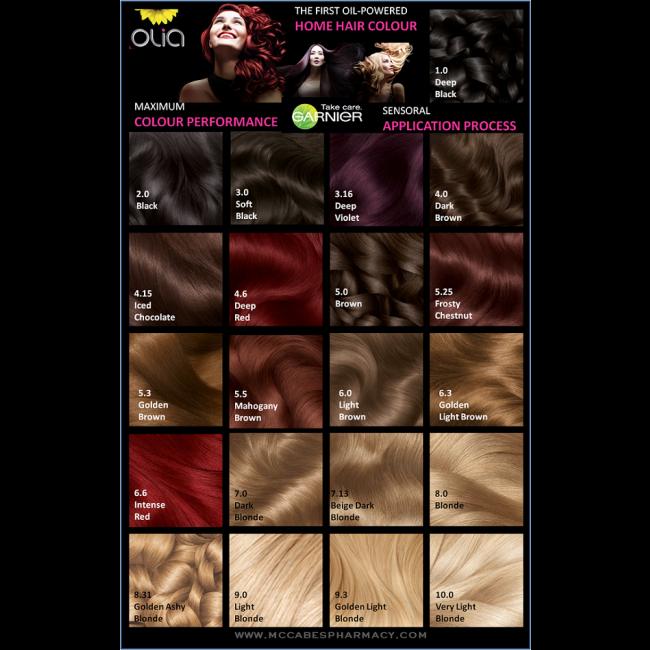 olia hair color chart: Garnier olia colour chart ireland 2 2 1 1 1 1 1 1 1 2 png 650 650