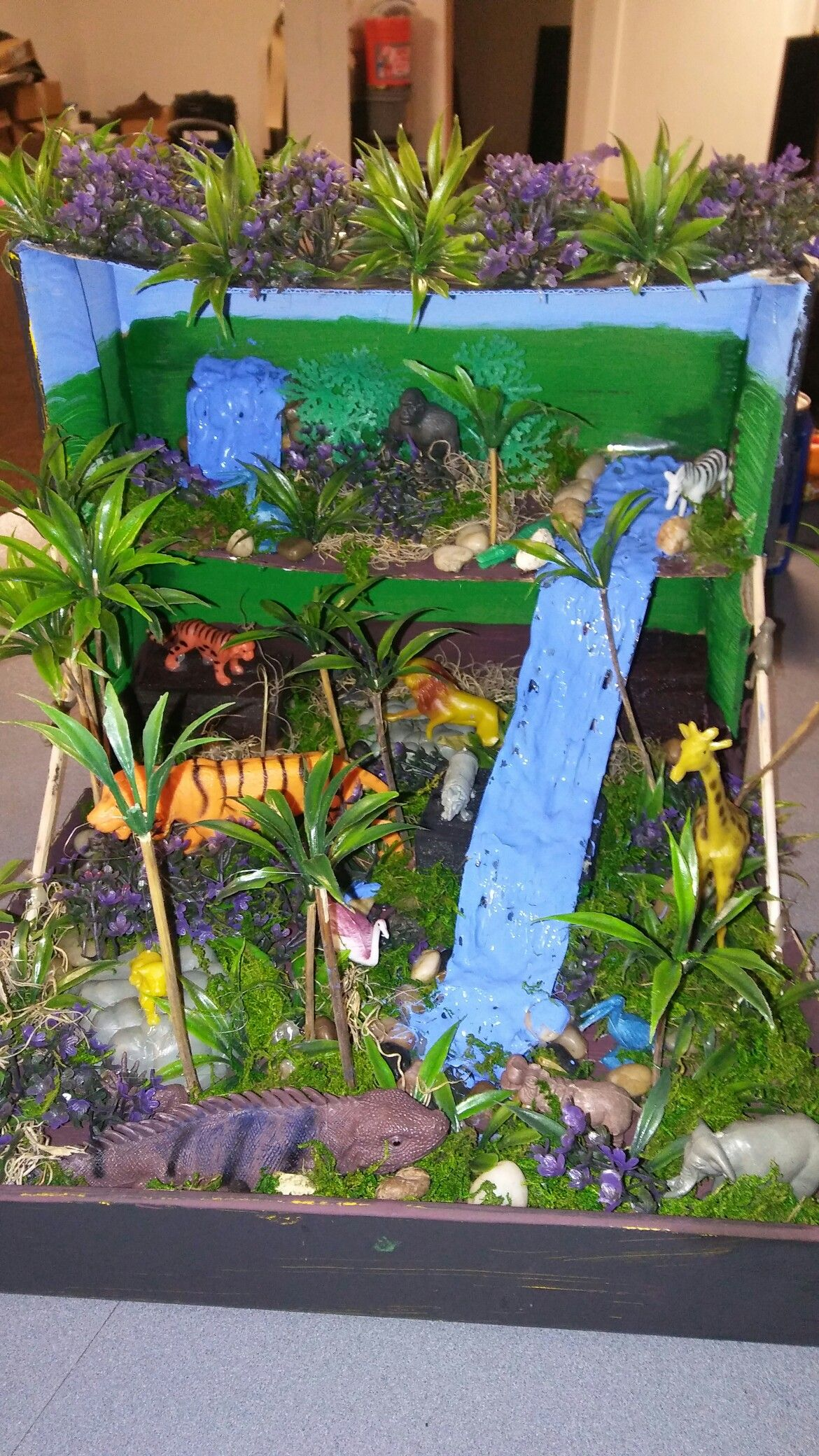 tropical rainforest ecosystem project ideas
