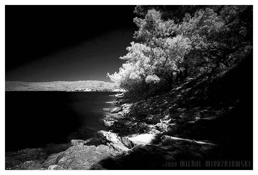 black and white by werol.deviantart.com on @deviantART
