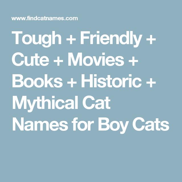 Names | Cats | Boy cat names, Cat names, Boy cat