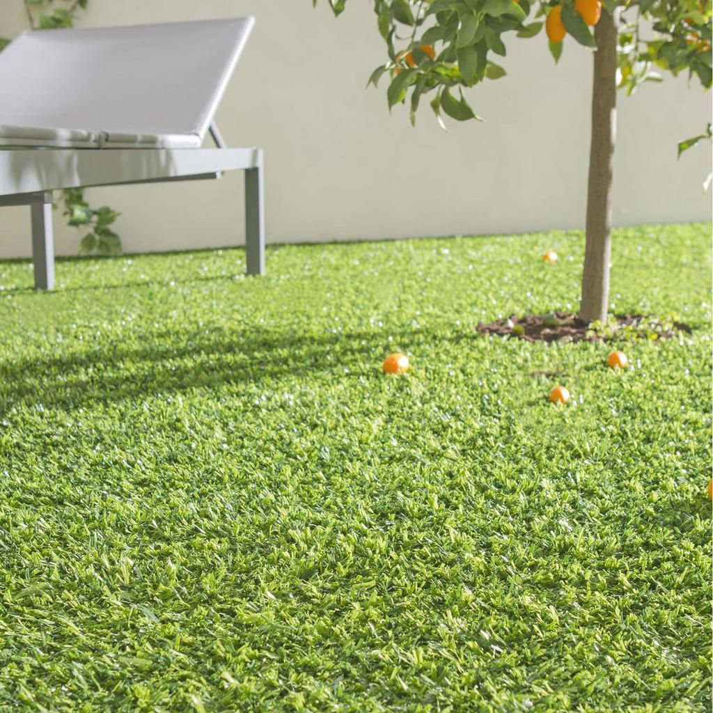 70 Gazon Synthetique Pas Cher Brico Depot With Images Plants Garden