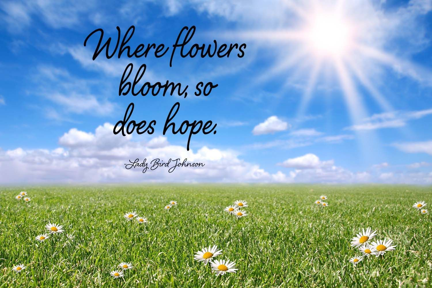 hope and flowers quotes