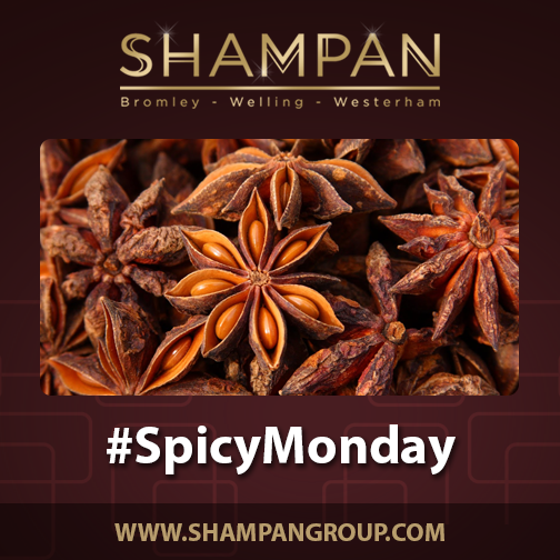 SpicyMonday. DidYouKnow Star Anise is popular spice used