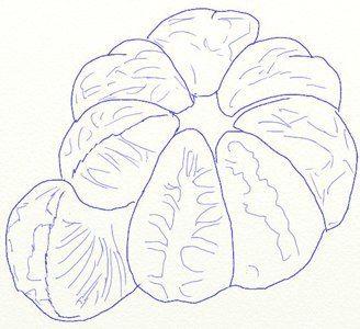Photo of ✐ Mandarine zeichnen Schritt für Schritt – Tutorial | DekoKing