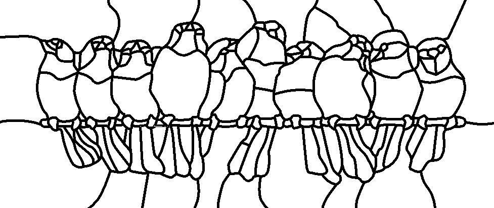 Birds on a wire (outline) Pattern taken from a pattern I found--I ...