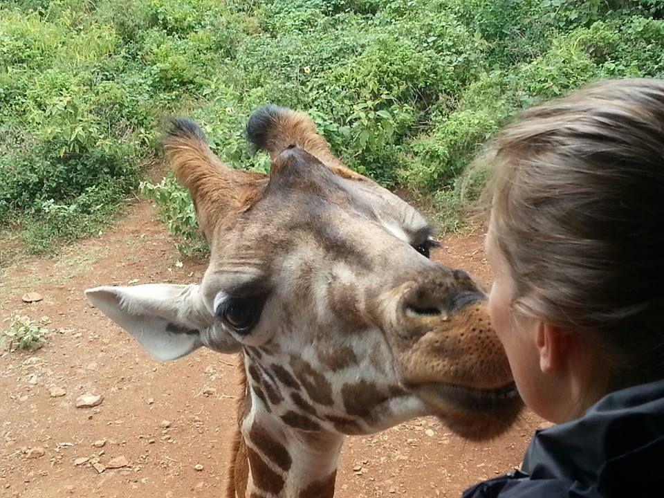 Giraffe Kisses! www.bluegiraffeboutique.com
