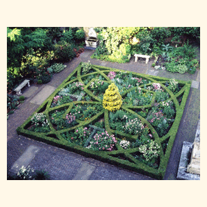 Knot garden with roses backyard bliss pinterest for Herb knot garden designs