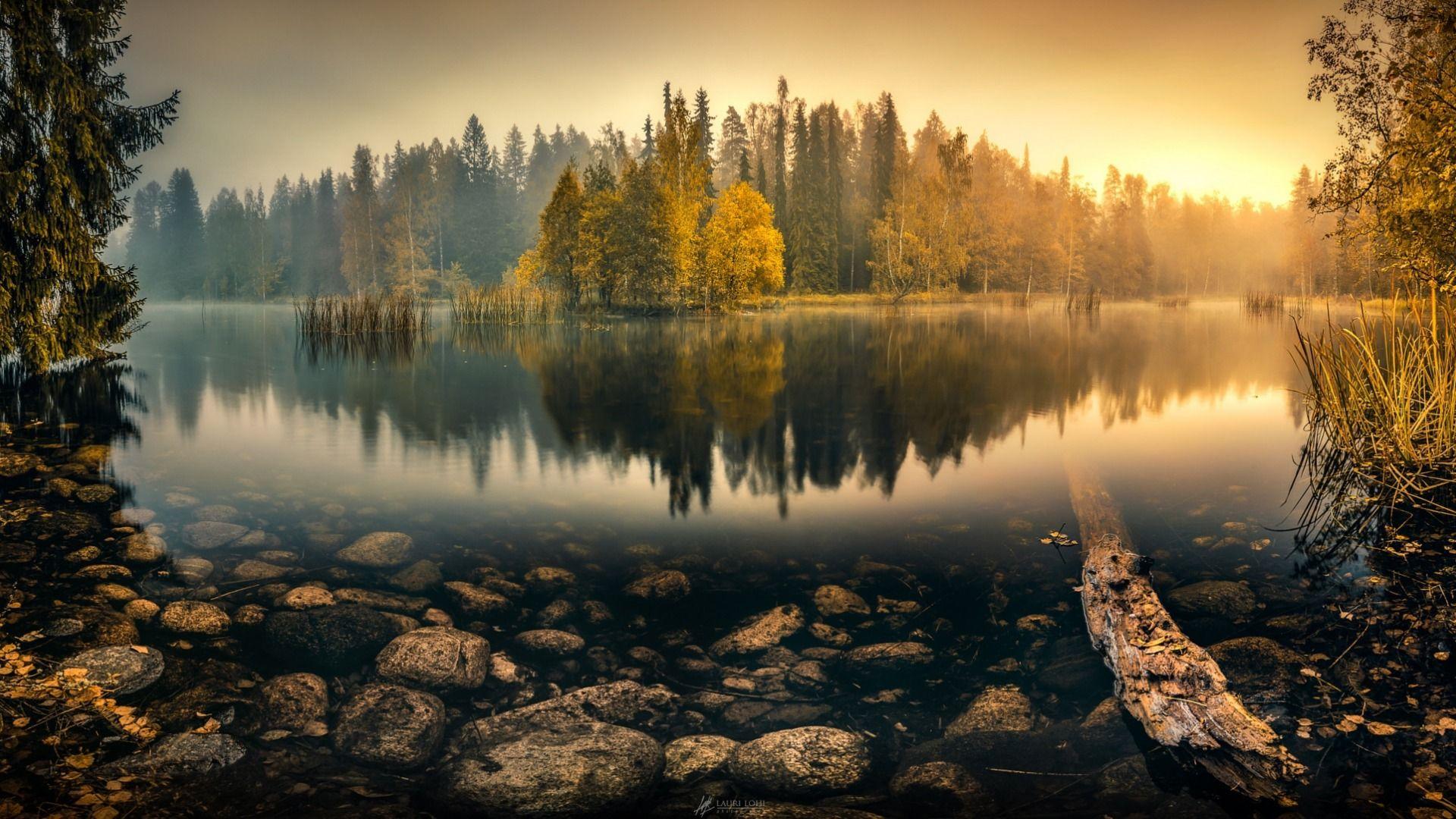 Обои туман, утро. Пейзажи foto 14