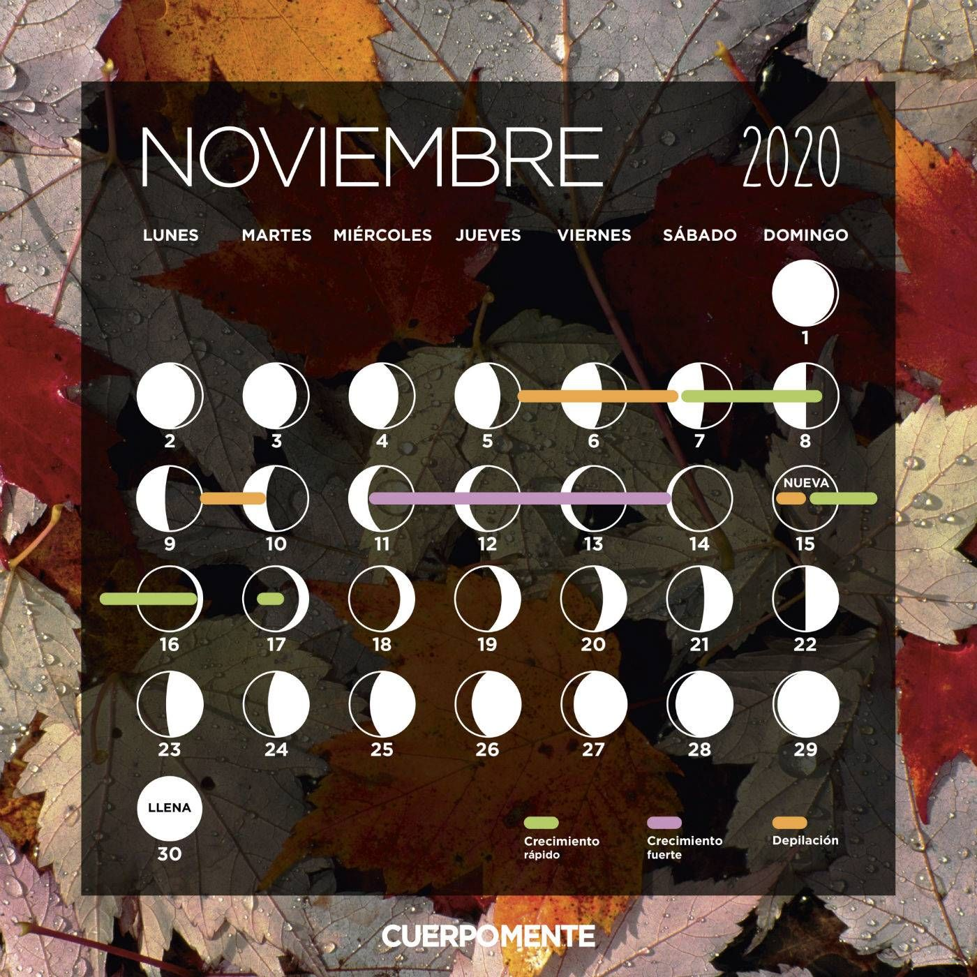 10 Ideas De Calendario Lunar Calendario Lunar Calendario Lunares