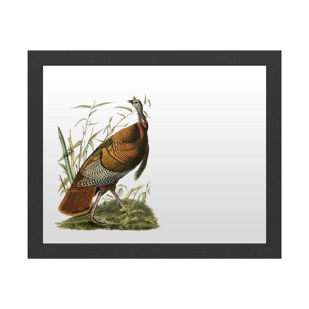 Trademark Fine Art 'Audubon Wild Turkey' Dry Erase Board