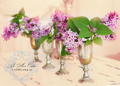 Lilacs from Vintage Rose Collection by Jo-Anne Coletti
