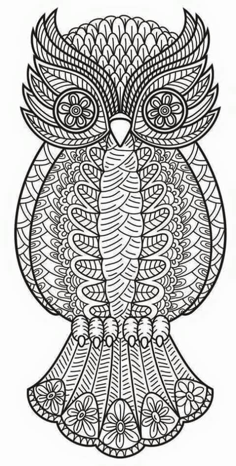 Find This Pin And More On Coloring Book By Drgnheat