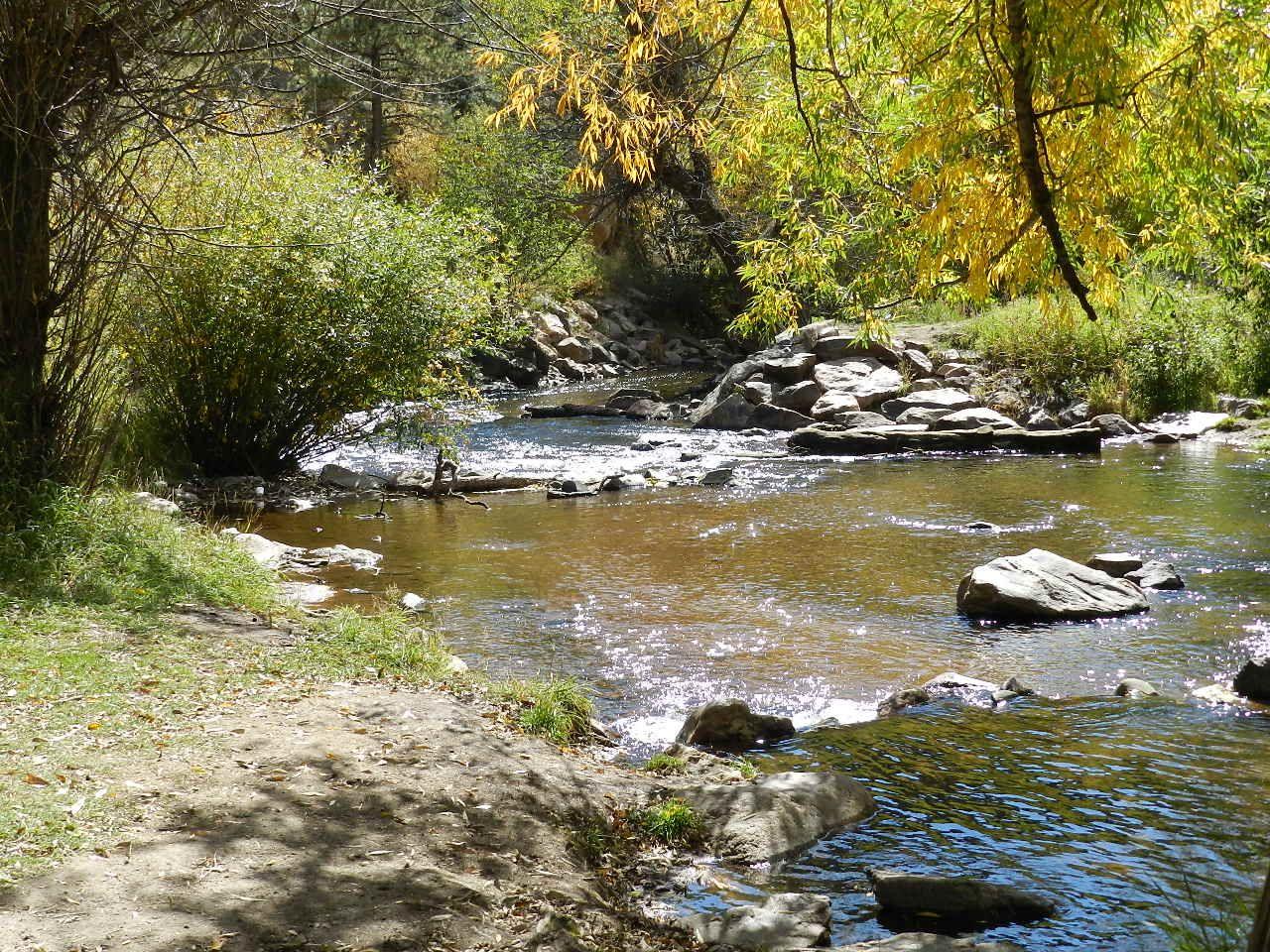 stream beside our picnic spot in O'Fallon Park, CO  9/26/11