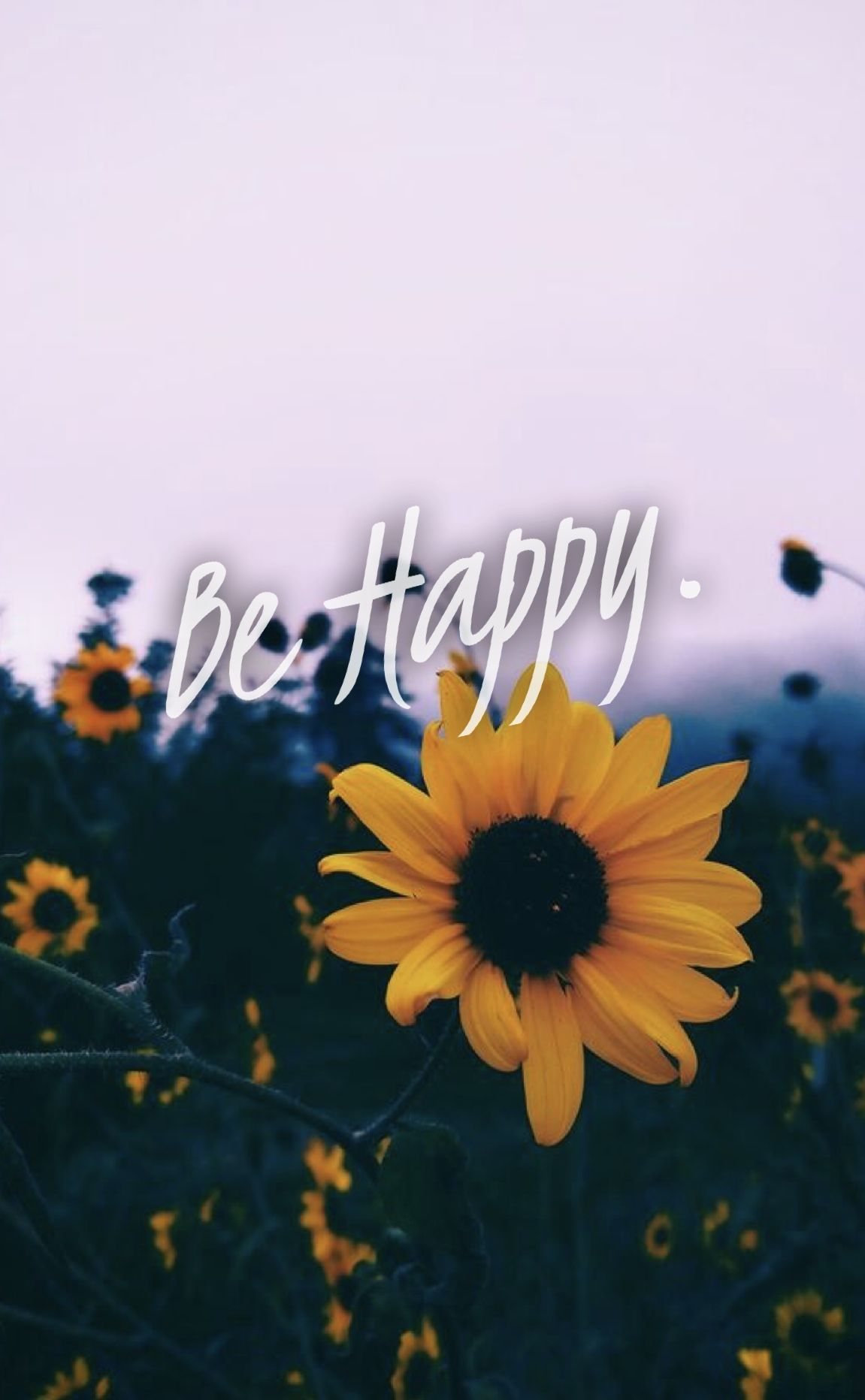 Wallpapers 💕 Sunflower wallpaper, Aesthetic iphone
