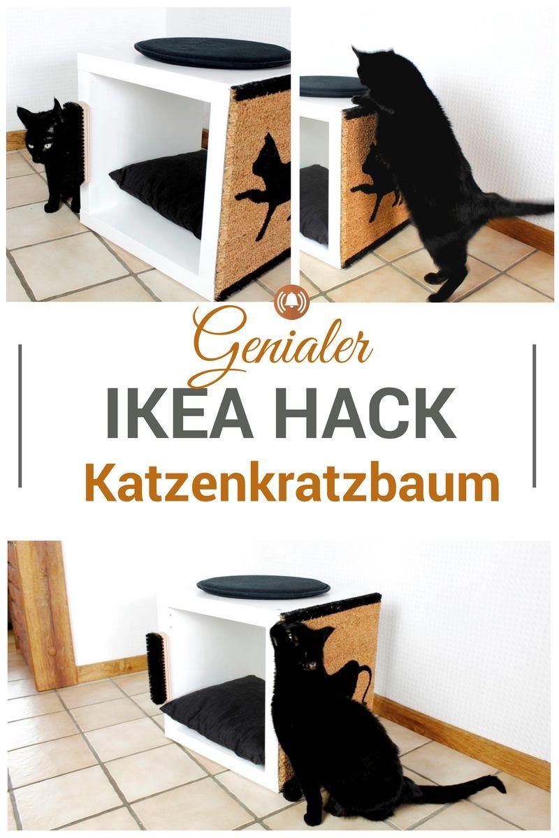 Einfach genial, dieser Ikea Hack! Bau deiner Samtpfote einen individuellen Katzenkratzbaum, der gleichzeitig als Kuschelhöhle und Aussichtsplatz dient. Auf diesem Thron wird deine Katze sich fühlen wie