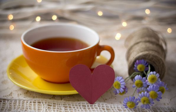 Facts About Tea You Need To Know