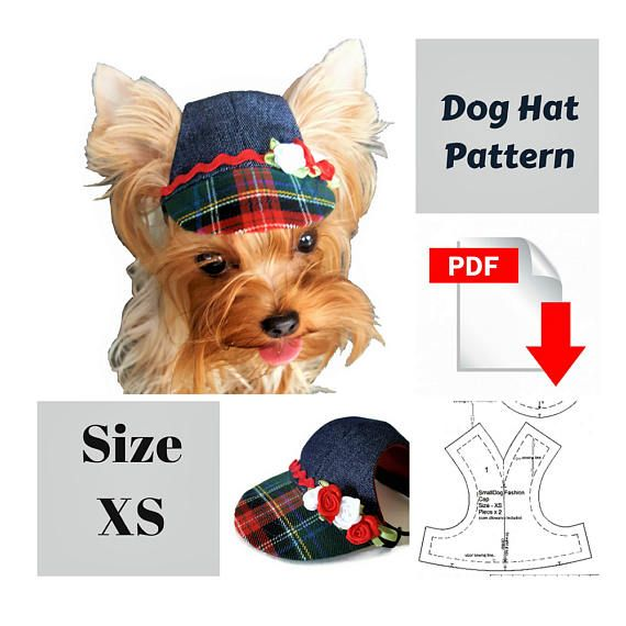Small dog hat pattern for dog Pet hat PDF Dog hat sewing Pdf ...