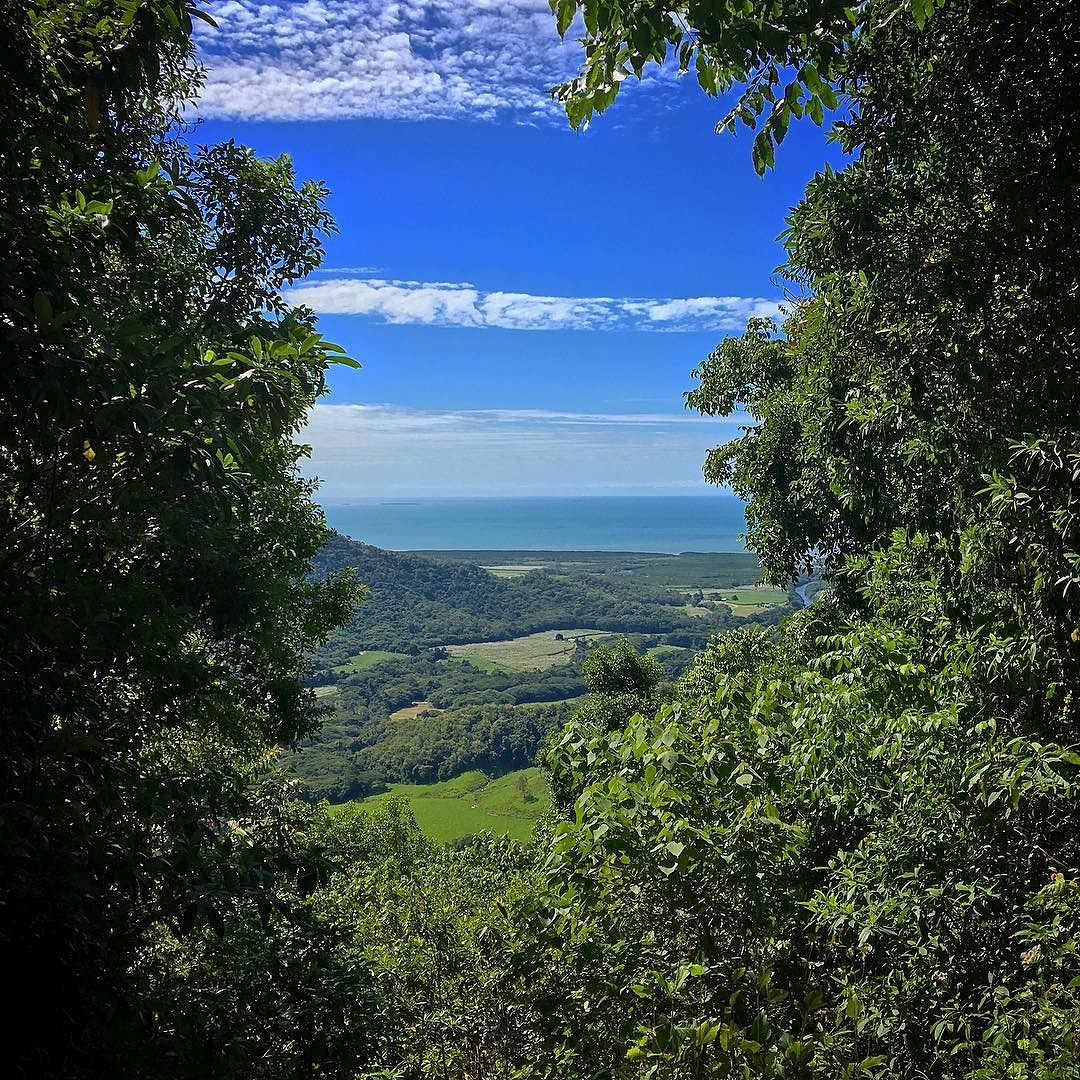 The perfect office break! A short walk up the Bump Track let's us forget all about those emails #myportdouglasdaintree