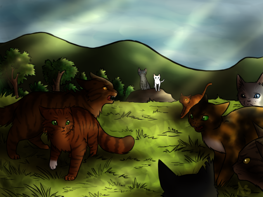 Surrounded Warrior cats, Warrior, Cats