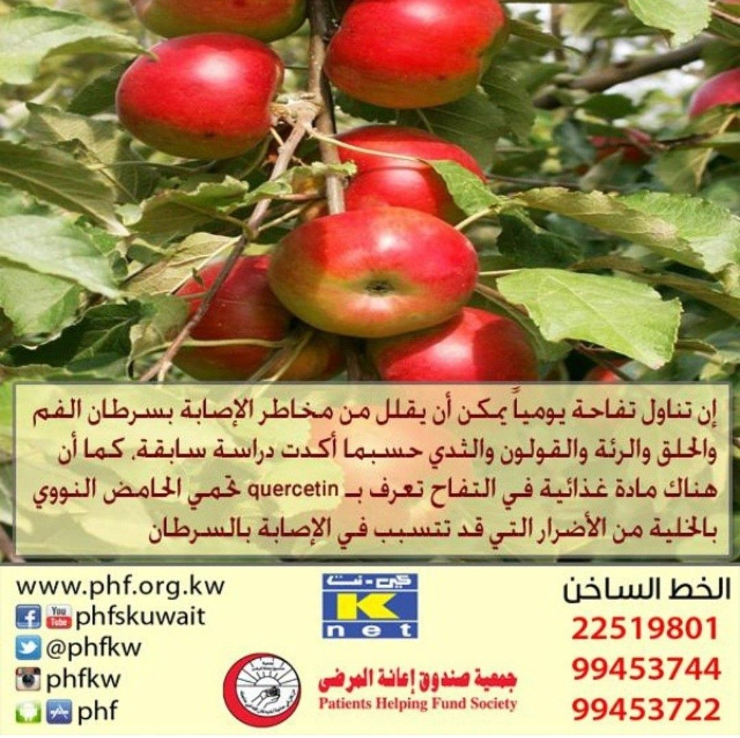 Pin By فوزيه بوشهري On منوع Quercetin Fruit Vegetables
