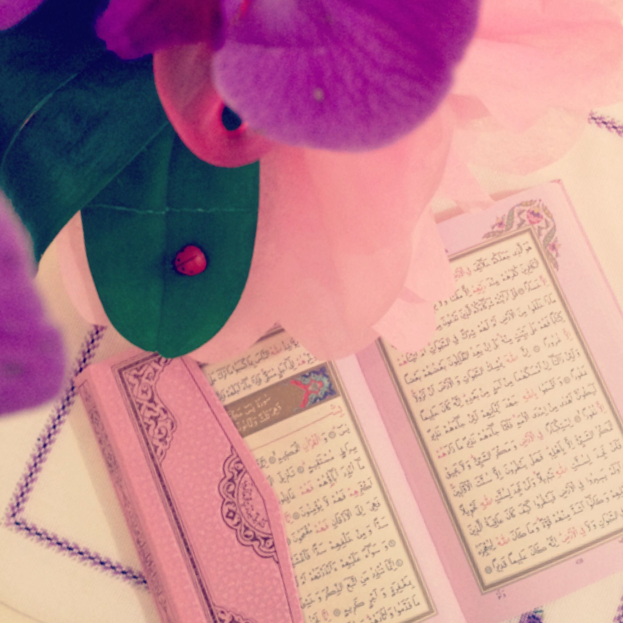Muslm Islamic Muslmkds Muslmchld Sweetbaby Islamiyet