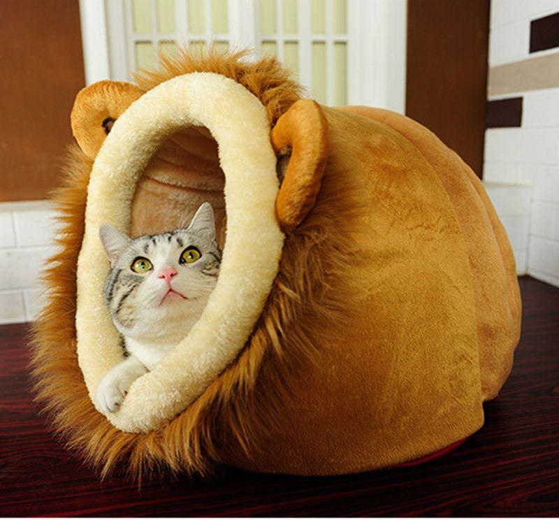 Chester needs a little den bed...