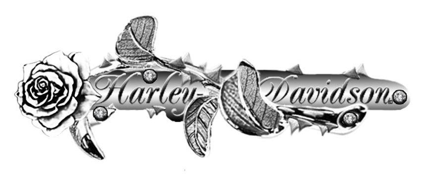 harley davidson bucket