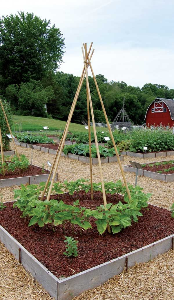How to Make Cheap Garden Beds - Organic Gardening   Mother earth ...