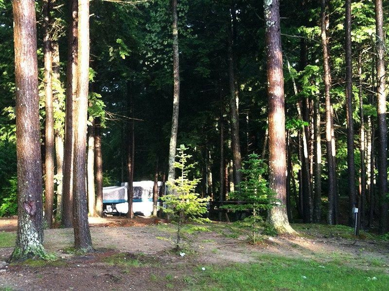 "838dbb9c42788a Hemlock Grove Campground offers ""a northern Maine atmosphere with a  southern Maine convenience"" amid tall trees"