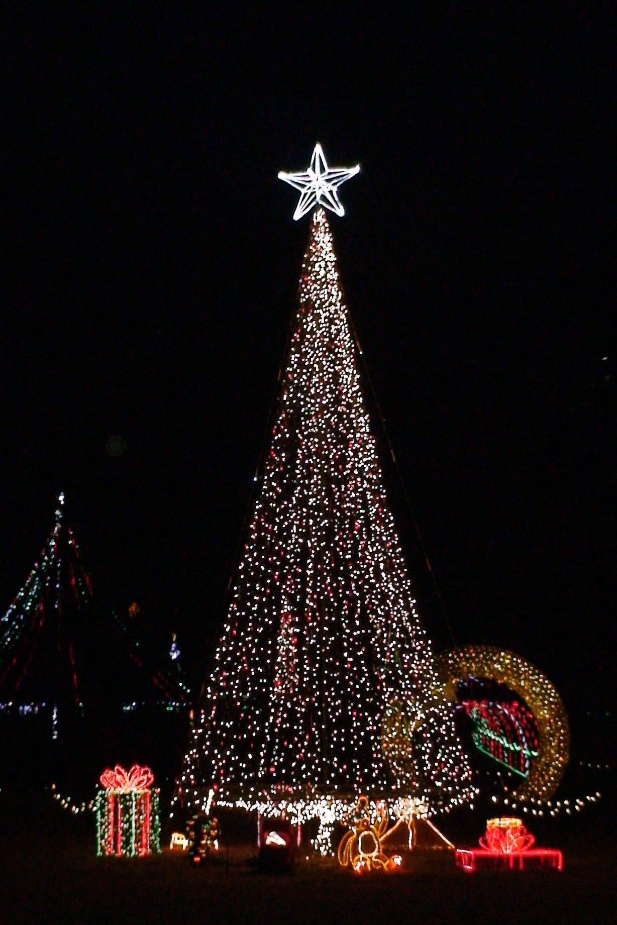 garvan gardens christmas tree lights - Garvan Gardens Christmas Lights