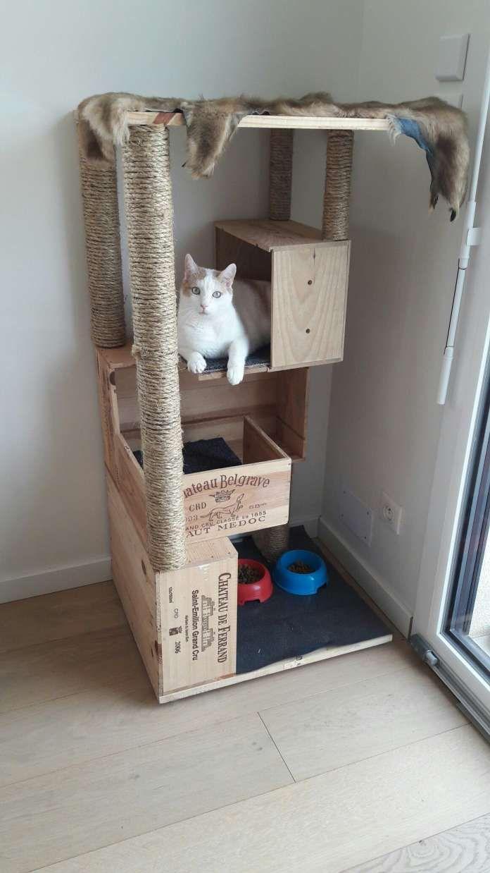 Griffoir Chat Fait Maison arbre À chat fait maison arbre À chat avec caisses de vins