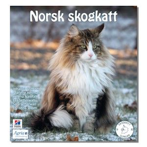 Image From Http Skogkattslingan Com Images Omslagbokskugga Jpg Norwegian Forest Cat Forest Cat Beautiful Cats