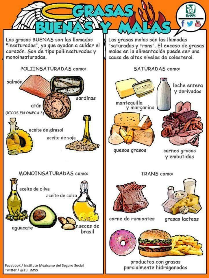 Grasas Buenas Y Malas Nutrición Grasas Buenas Alimentacion
