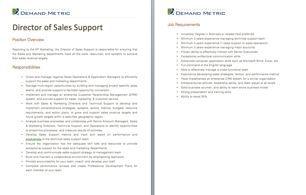 Director of Sales Support Job Description A template to